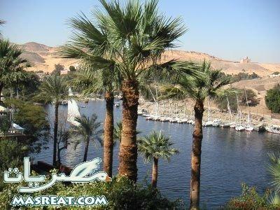 ونكمل رحلتنا  الى اسوان Aswan15